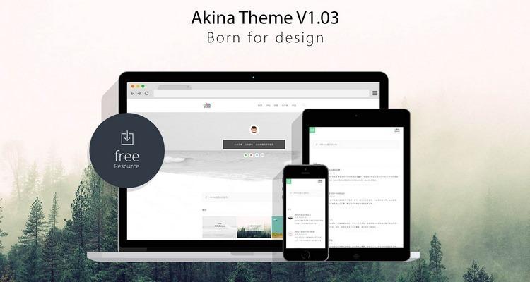 Akina——由国人Fuzzz设计的极简博客WordPress主题-奇客云